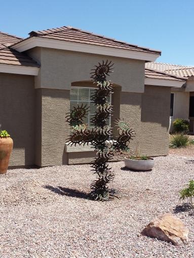 cactus side